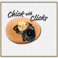 Chick with Clicks